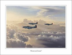 "Affiche P-51D ""Homeward Bound"""